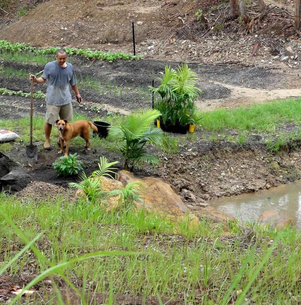 nursery vegetable garden irrigation dam builder Gold Coast Brisbane
