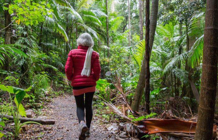 walking track trail cutting gold coast brisbane